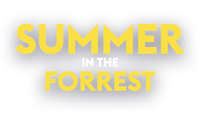 summer in the forrest